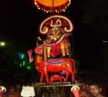 Selvasannithy festival day 13 night