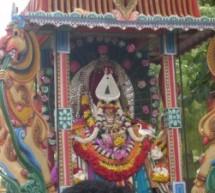 Selvasannithy festival day 13 morning photos (kavadi – thondaimanaru youths) from suthan