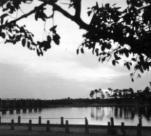 valuable thondaimanaru 1950s pictures from K V Samy