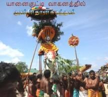 Sannithy festival  14 day