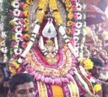 selvasannithy temple festival starts today thursday