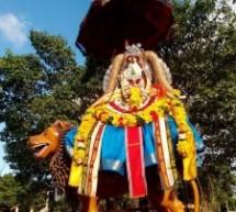 Sannithy Karthigai festival